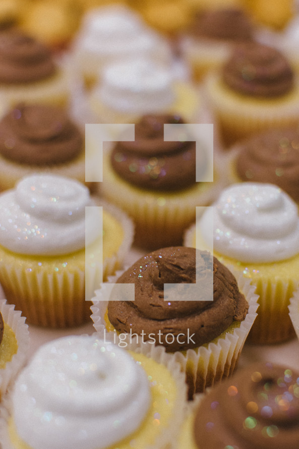 cupcakes with chocolate and vanilla icing