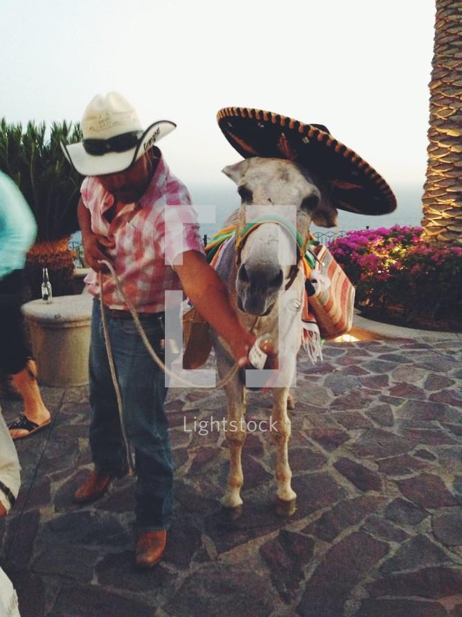 A man in his burro