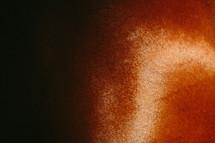 brown horse fur