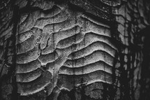 curves carved into stone