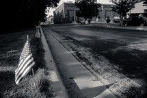 American Flags along the curb