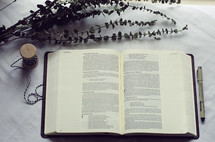 an open Bible and branches of eucalyptus and spool of twine
