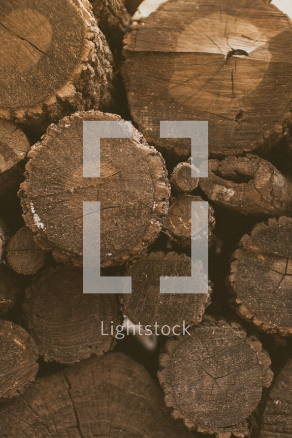 A stack of firewood