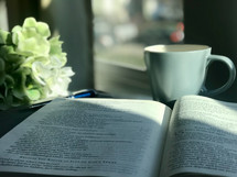 notebook and opened Bible in a window