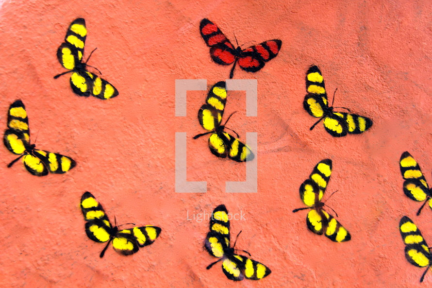 Graffiti wall art butterflies - Radically unusual