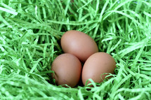 eggs in a nest of decorative grass
