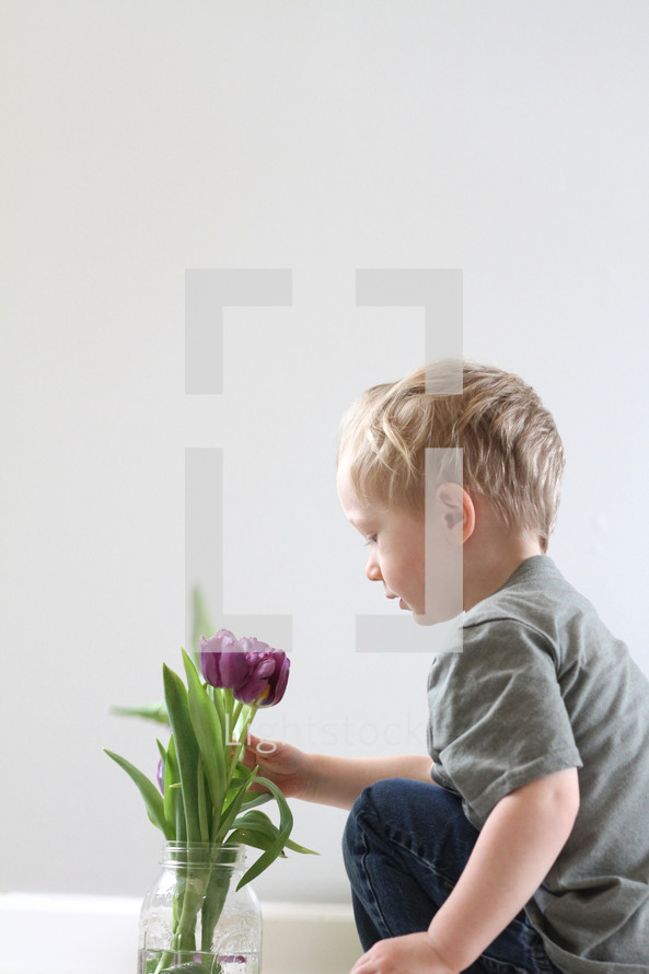 toddler boy touching flowers in a vase