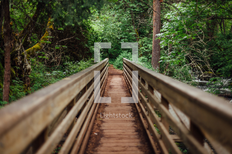 Wooden bridge in forest focus on path