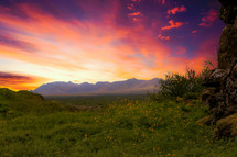 mountain peaks and green meadow under a vibrant pink and purple sky
