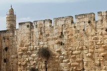 Old city Walls of Jerusalem with Tower of David