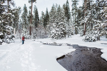 woman taking a picture of a stream lined with snow