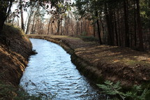 stream flowing within a levee