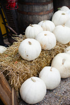 white pumpkins on a bale of hay