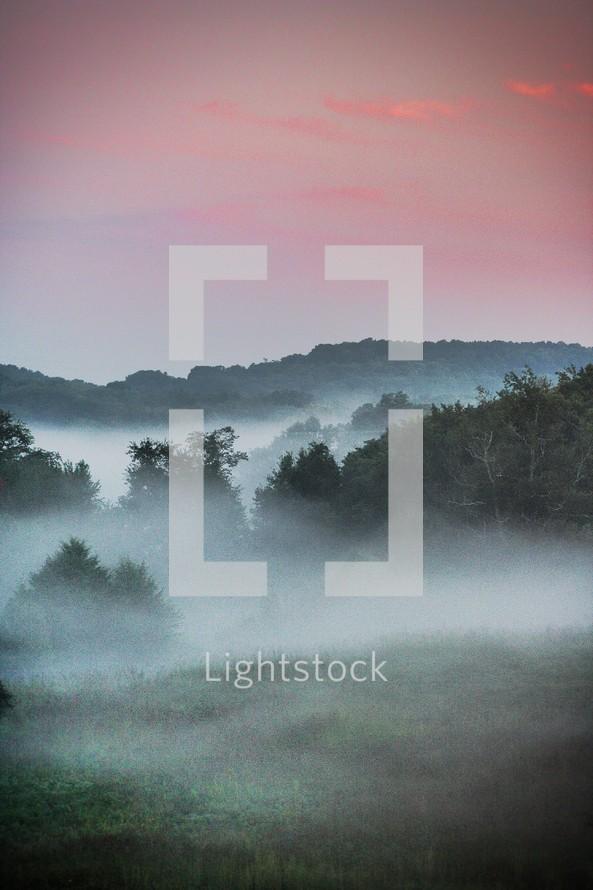 fog on a hillside