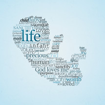 Pro-Life icon