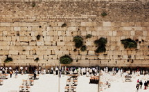 visitors to the wailing wall in the Holy Land