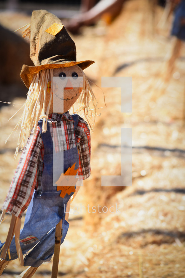 scarecrow and hay bales
