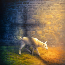 A colorful image of a white lamb with the shadow of the cross of Jesus.