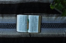 pen lying on the pages of a Bible