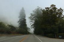 fog over a rural road