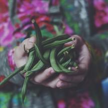a little girl holding a handful of green beans