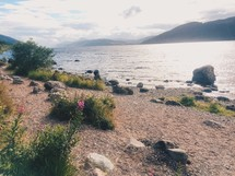 shoreline in Scotland