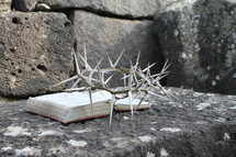 Crown of thorns with a Bible on a rock ledge.