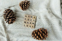 pine cones on a knit blanket and comfort words