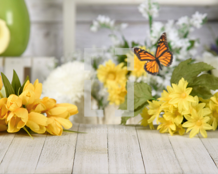 butterfly and yellow spring flowers