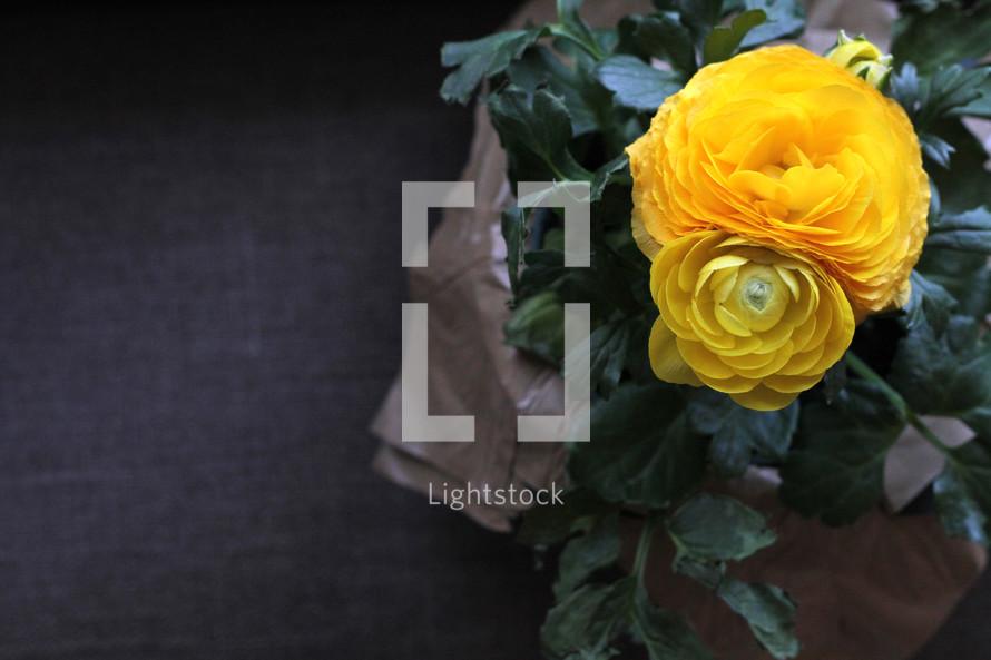 yellow flowers gift