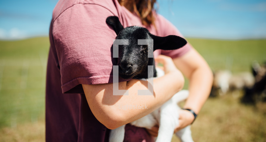 woman holding a lamb