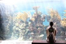 woman looking a fish at the aquarium