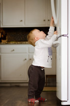 a toddler boy reaching up to try and open a refrigerator