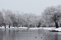 snow on the shore of a pond