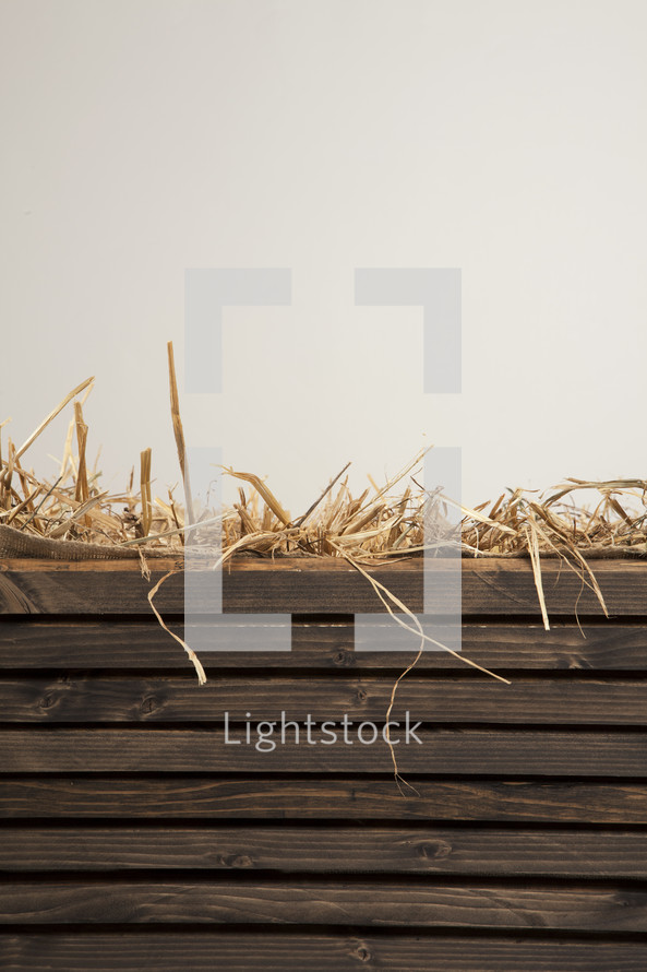 straw in the manger