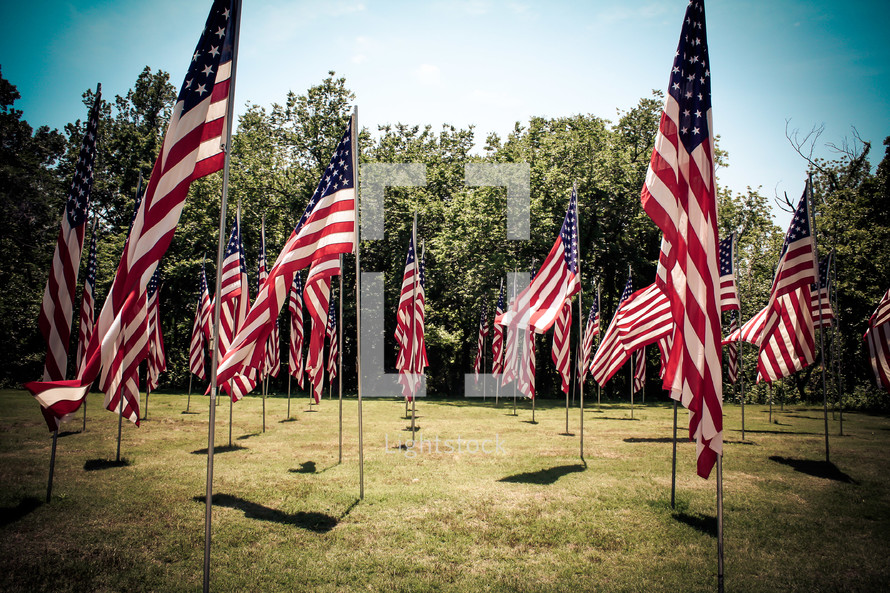 American Flags on Memorial Day