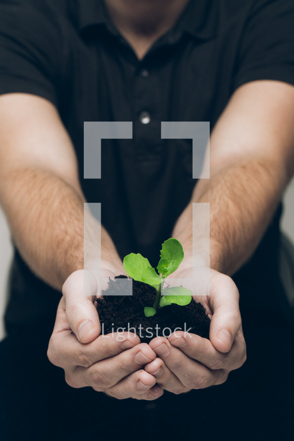 man with cupped hand holding soil and a plant