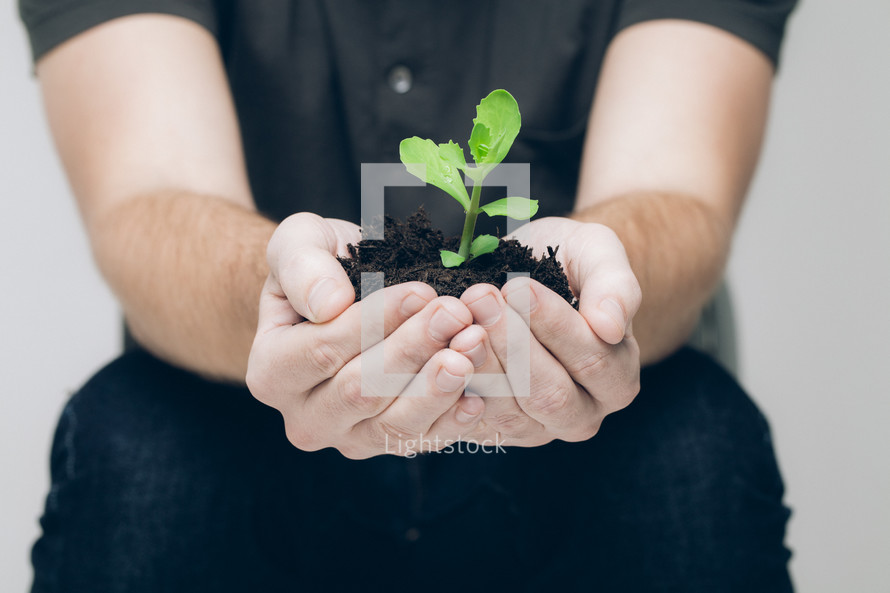 cupped hands holding soil and a plant
