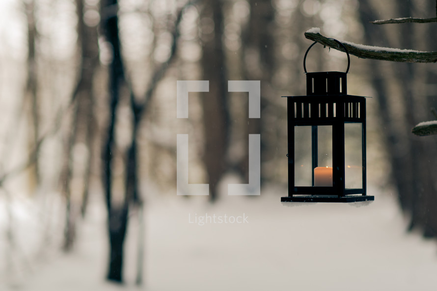 candle in a lantern hanging on a branch in winter