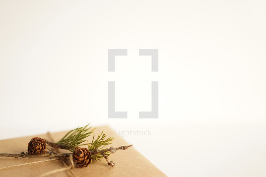 gift box wrapped with twine and pine cones