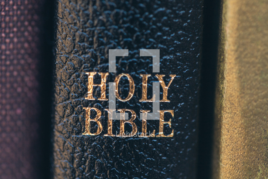 Holy Bible on a bookshelf with other books