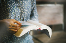 a person standing reading a Bible