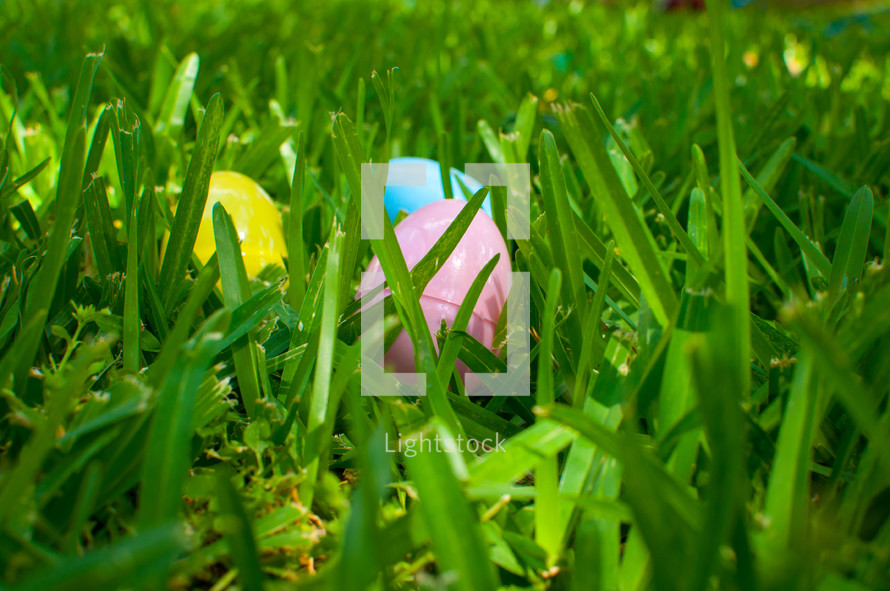 plastic Easter eggs in the grass