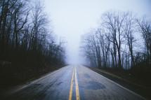 a rural road through a foggy forest