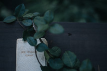 Ivy and a New Testament and Psalms Bible