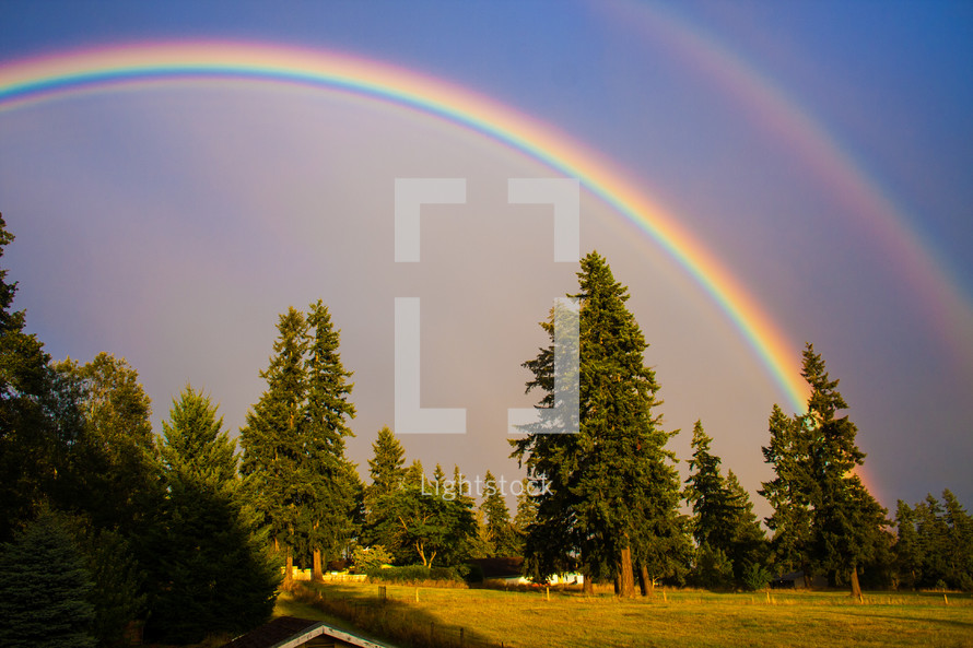 Rainbow in the sky, over field of trees