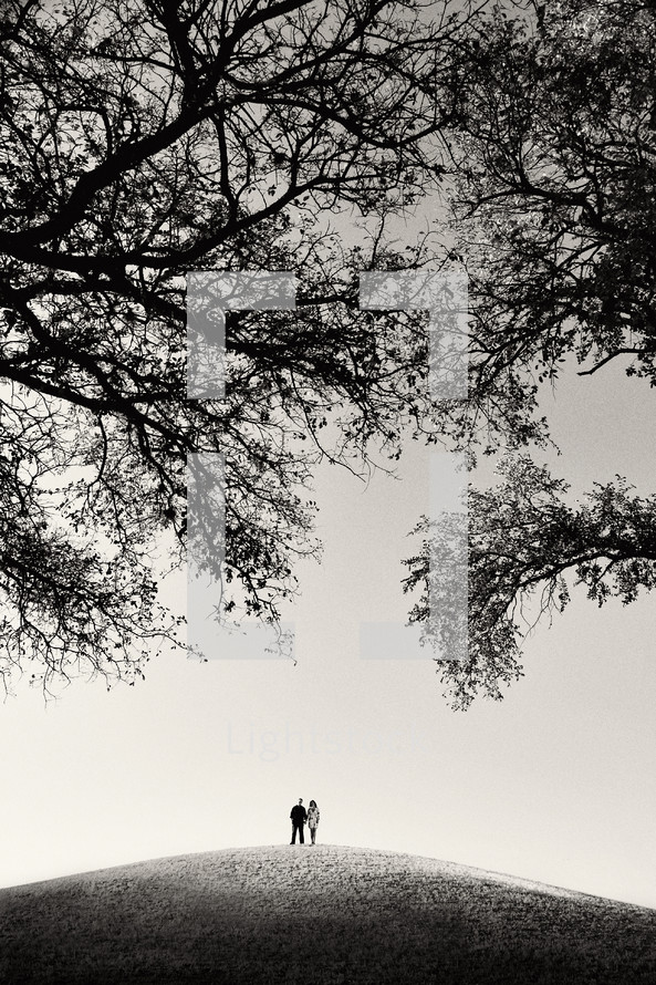 distant couple on a hill under tree branches