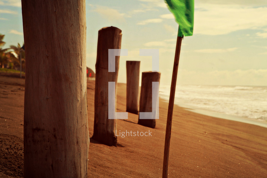 wood pilings on a beach and a green flag