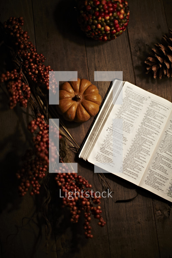 Bible, pumpkin, and berries on a wood table