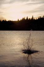splash in a lake
